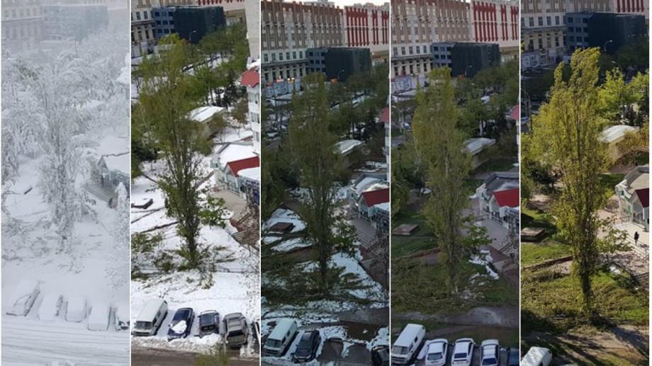 (foto) Time-lapse: De la o iarnă cumplită la o primăvară fermecătoare în doar 5 zile de aprilie