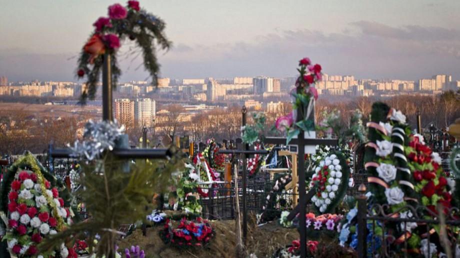 Ministerul Mediului recomandă cetățenilor să renunțe la tradiția florilor artificiale la cimitir