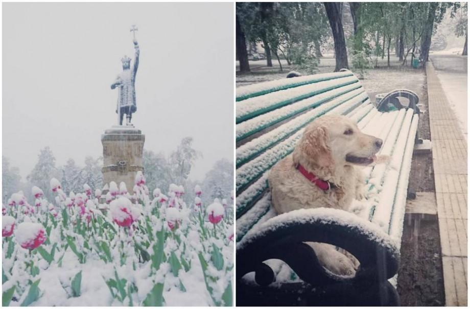 (foto) Cum se vede zăpada de la sfârșit de aprilie din Chișinău pe rețelele de socializare