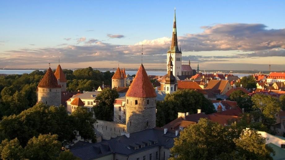 Tinerii au oportunitatea de a câștiga o bursă pentru studii de masterat în Estonia