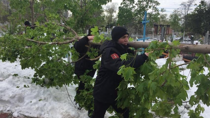 Situația în Chișinău la această oră: Peste 300 de voluntari au participat la acţiunile de evacuare a crengilor rupte