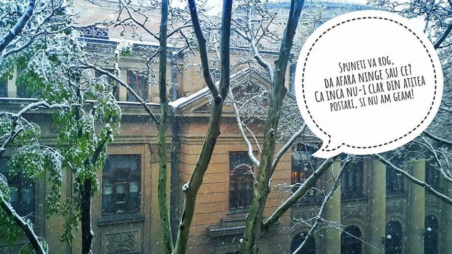 Sarcasm și ironie: Cum internauții încearcă să accepte ideea că a nins la sfârșit de aprilie