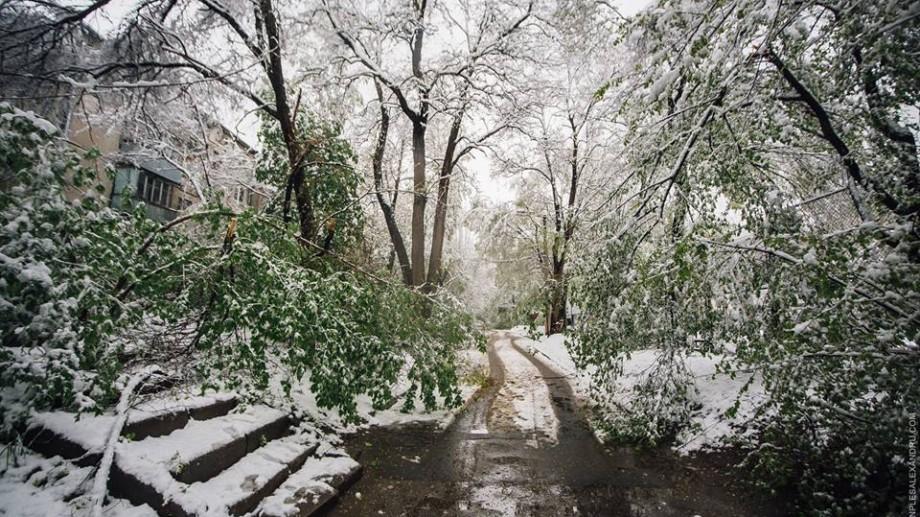(foto) Imagini de iarnă în aprilie. Fotograful Ion Pleș a surprins Chișinăul acoperit de zăpadă