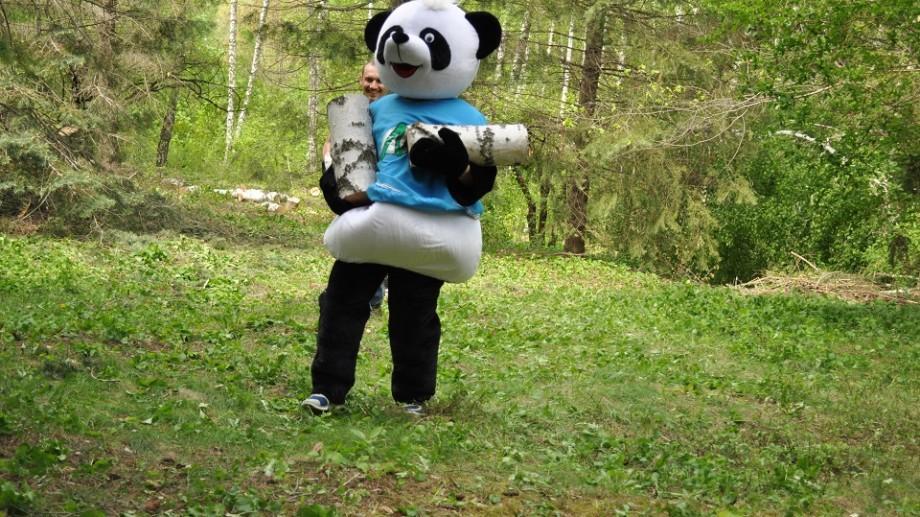 (foto) Un urs panda a ajutat zeci de voluntari să salubrizeze Grădina Botanică