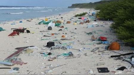 (foto, video) Cea mai mare densitate de deșeuri din lume se află pe o insulă nelocuită