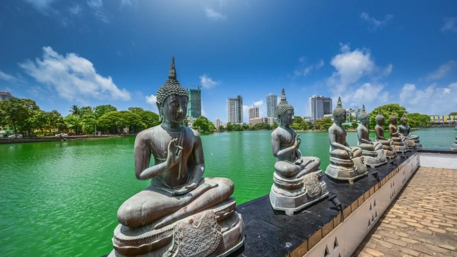 Nu rata ocazia de a călătoria și a învăța. Află cum poți obține o bursă de studii în Sri Lanka