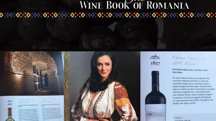 Cele mai bune vinuri din România și Moldova, adunate în primul ghid bilingv. Cum au fost evaluate vinurile produse la noi
