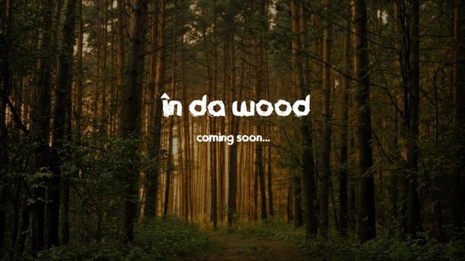 Vrei să contribui la primul festival de muzică rock organizat în pădure? In Da Wood Fest recrutează voluntari