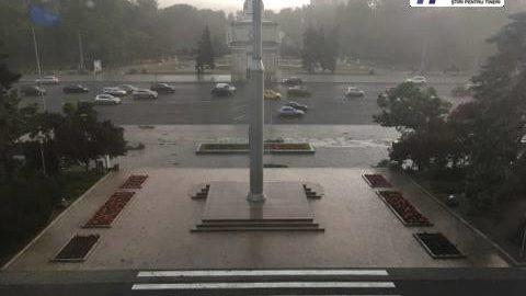 (foto) Primele consecințe ale ploii. Un copac a fost doborât în curtea Guvernului Republicii Moldova