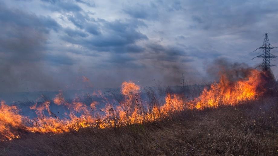 Autoritățile avertizează: În partea de nord a țării se preconizează incendii de vegetație în săptămâna ce urmează