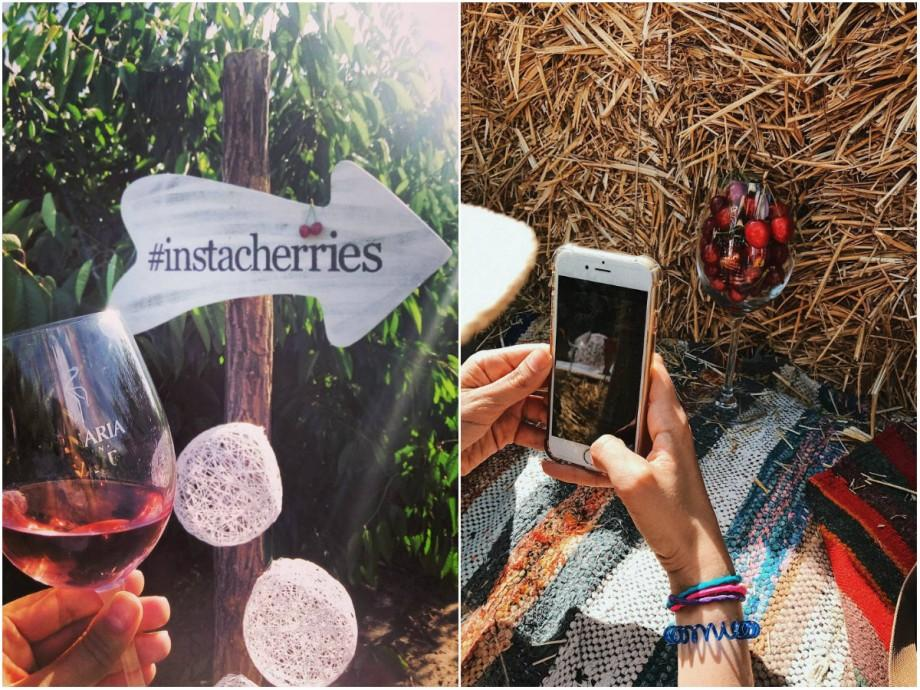 (foto) Cireșe printre hashtaguri: Cum s-a văzut pe rețelele de socializare primul Instameet al verii 2017