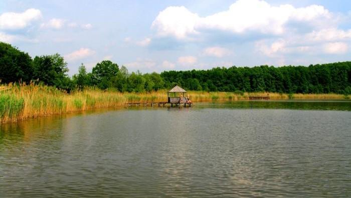 Salvatorii au recuperat din râul Nistru cadavrul unei minore în vârstă de 11 ani