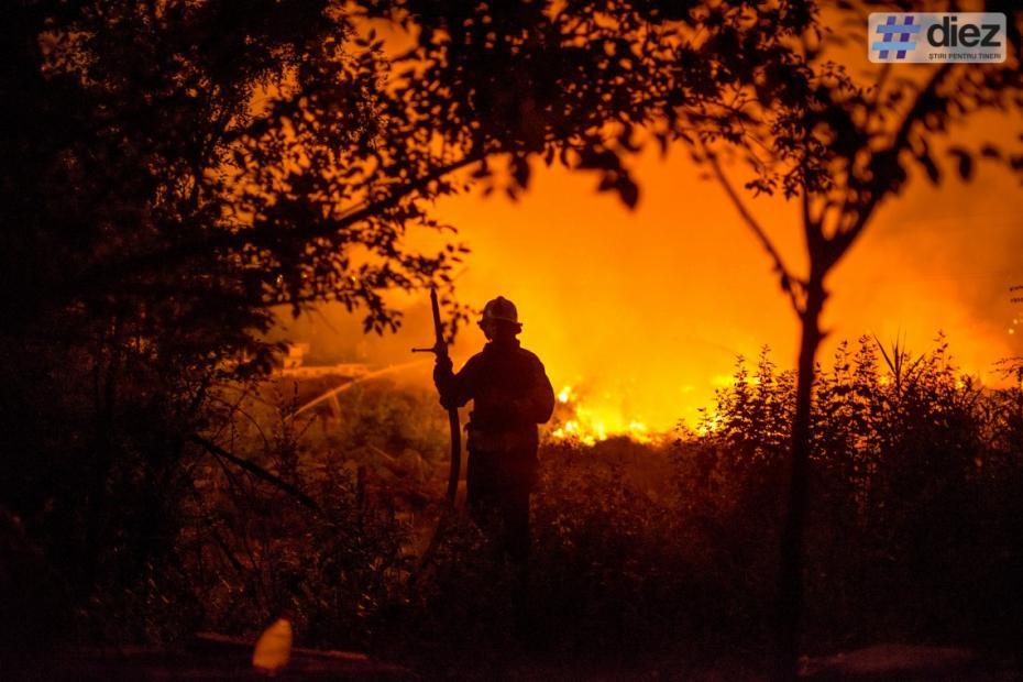 Incendiul de la cimitirul Sfântul Lazăr. Focul a afectat o suprafață de 250 de m2