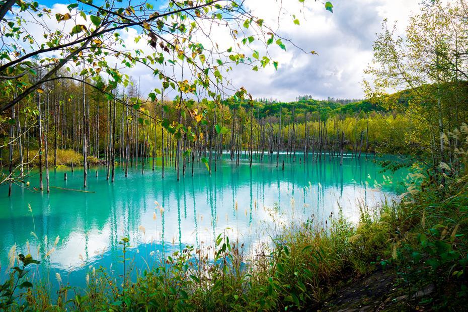 Photo: metropolisjapan.com