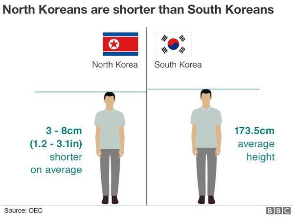 97957224-north-korean-heights-624