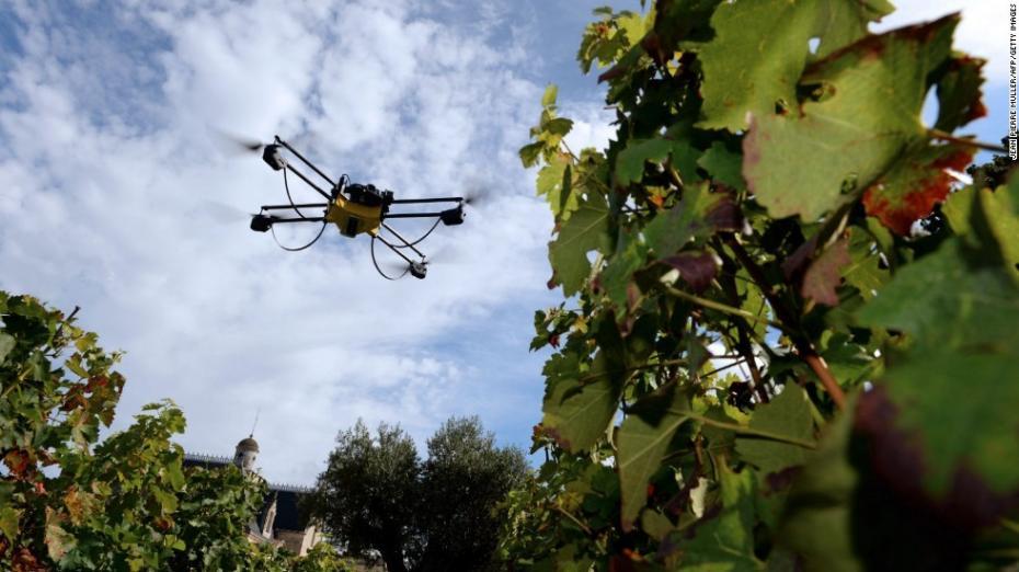Inovație tehnologică în viile din Moldova. O dronă va fi folosită pentru depistarea bolilor viței-de-vie