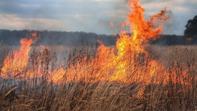 Codul Galben a fost prelungit! Pericol de incendii în toată țara până la sfârșitul săptămânii