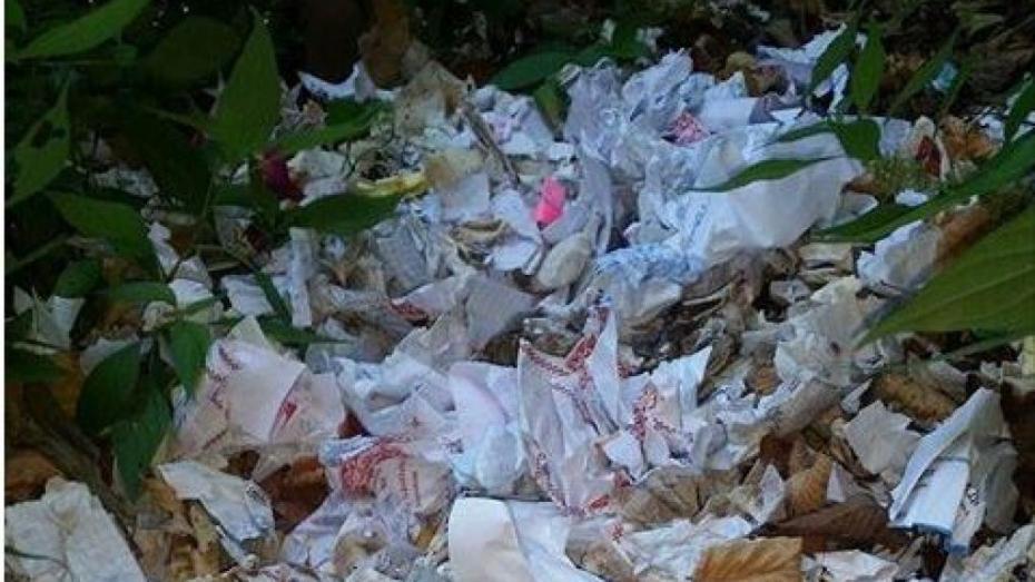 (foto) La gunoi? Unde ajung biletele cu dorințele creștinilor care vizitează Mănăstirea Saharna