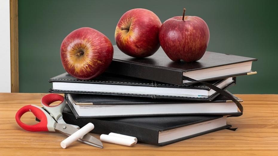 Din luna octombrie, peste 3500 tone de fructe proaspete vor fi distribuite în școlile din țară