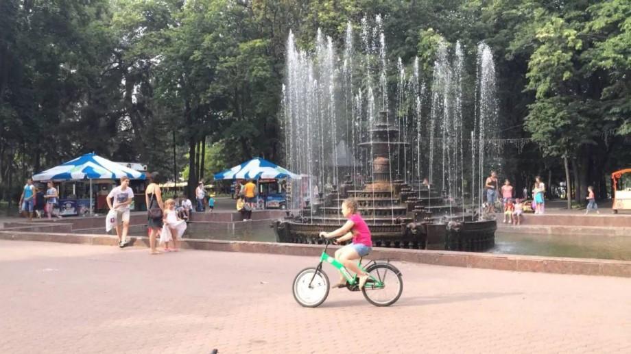 (video) Circa 40 de percheziții la gheretele din parcul Central și Dendrariu. Ce încălcări au fost depistate