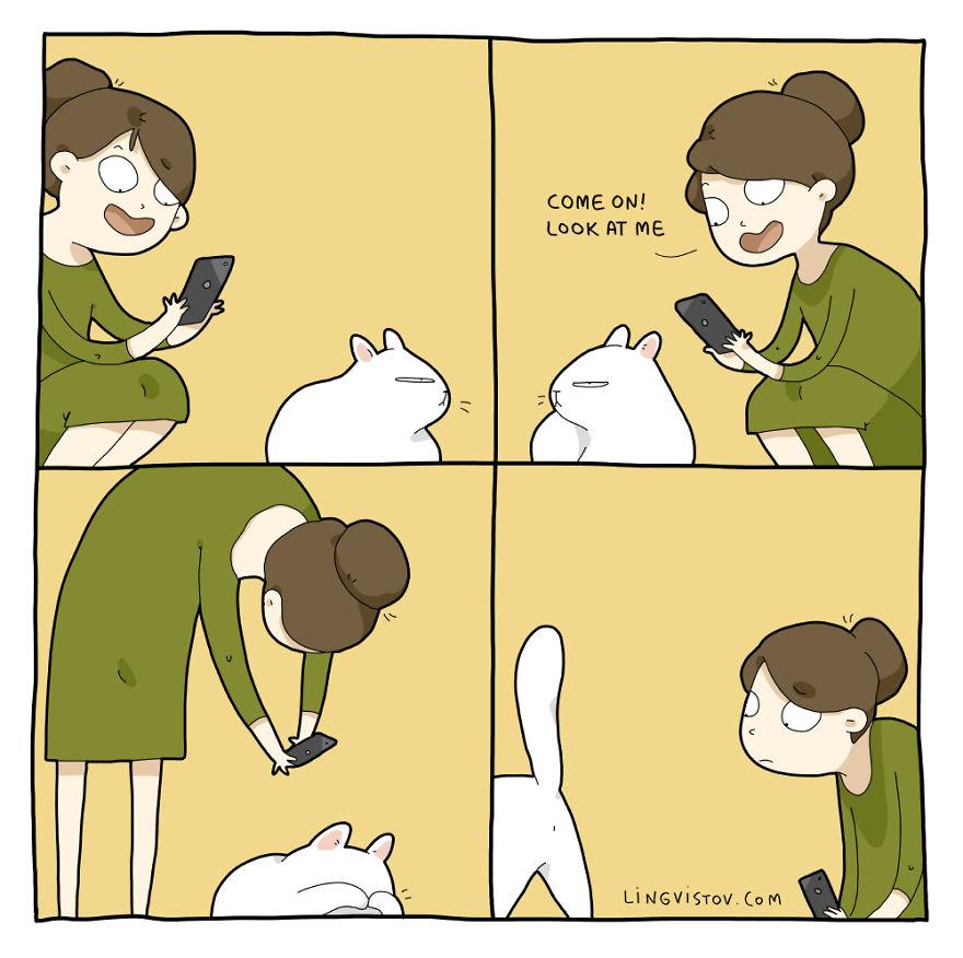 Comics-About-Life-With-A-Cat-59f1c78e5f0f9__880