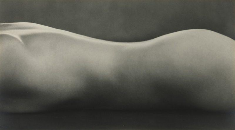 Edward_Weston-Nude-800x444