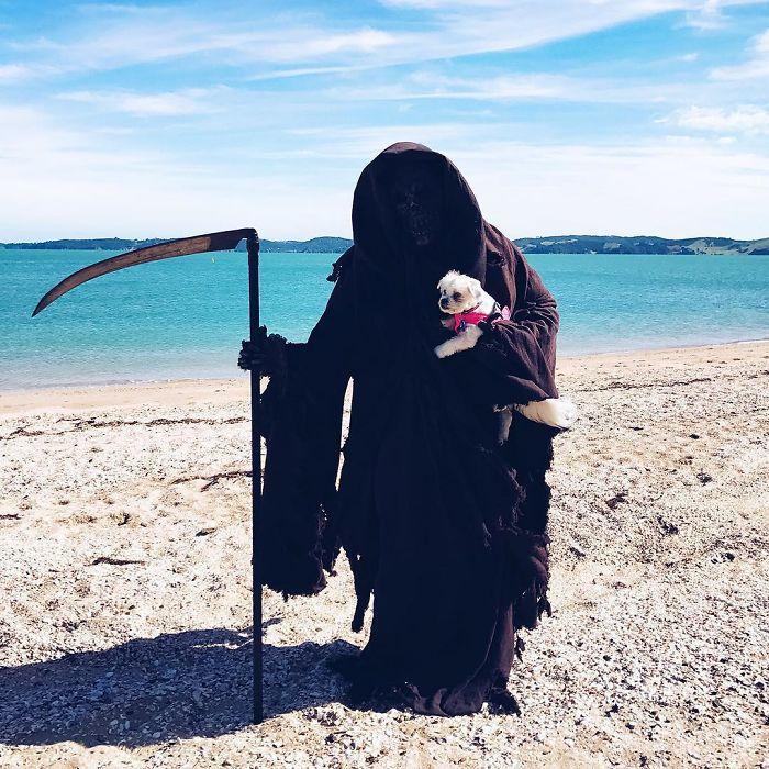 grim-reaper-beach-instagram-photos-swimreaper-14-59f6e981a841a__700