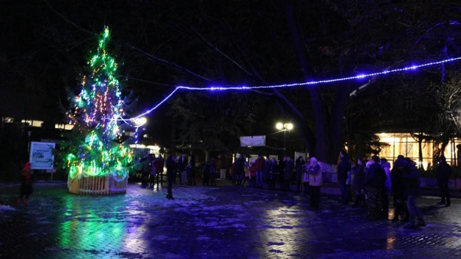 (foto) În premieră, la Universitatea de Stat Alecu Russo din Bălți a fost inaugurat Pomul de Crăciun