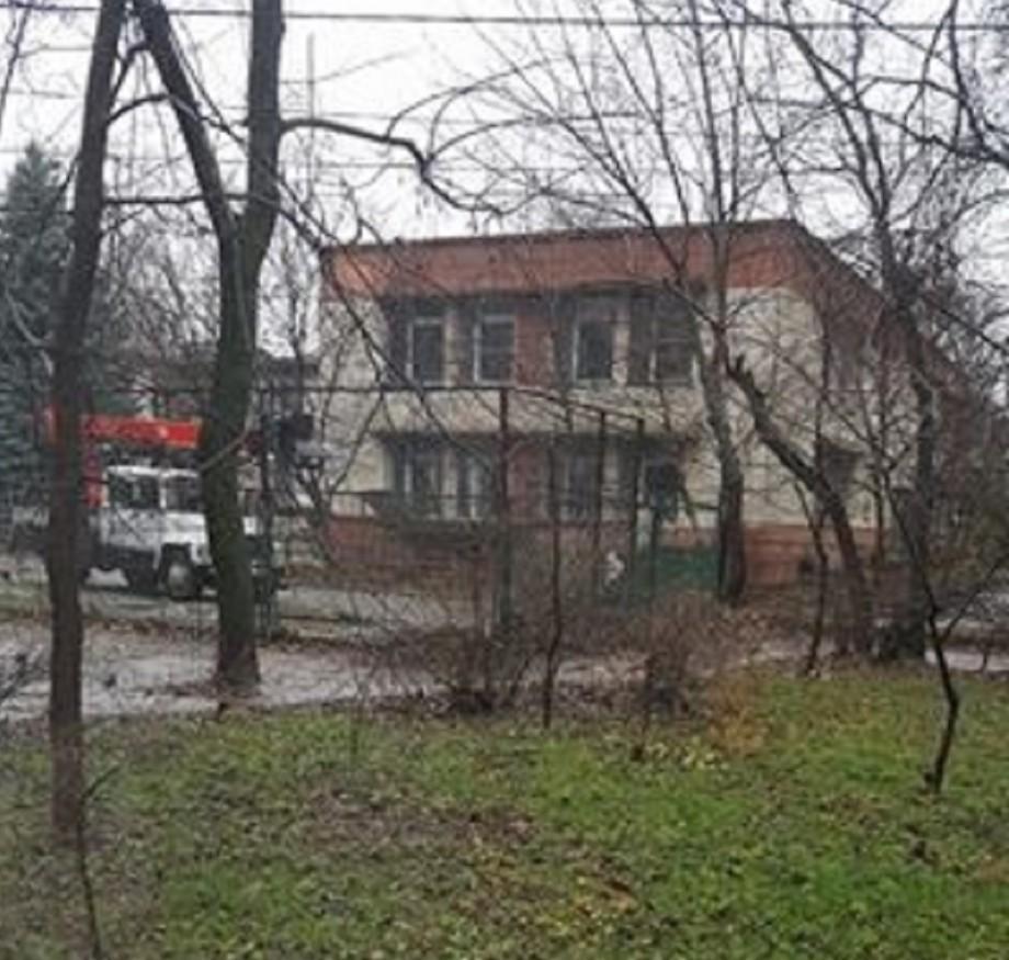 (foto, video) Noul brad se află în curtea unei grădinițe de la Botanica. Pentru a-l scoate, lucrătorii au tăiat mai mulți copaci din jur