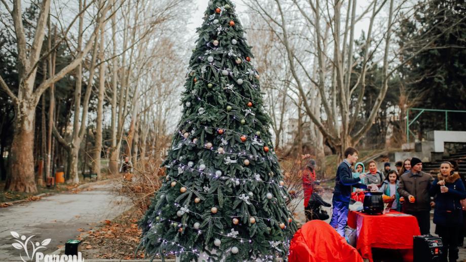 (foto) Încă un pom de Crăciun în Capitală. De data aceasta luminițe au fost aprinse pe Aleea Colorată