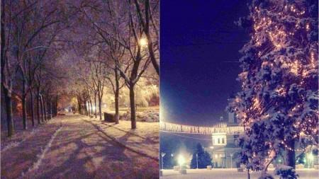 """PL despre retragerea din partid a lui Șalaru: """"Nu a fost depusă nici o cerere. A demisionat doar pe Facebook"""""""