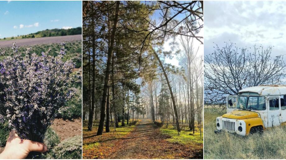 (foto) Moldova, văzută prin filtrele de pe Instagram. Călărași – raionul cu aromă de levănțică și gust de struguri