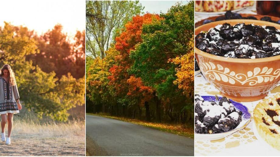 (foto) Moldova, văzută prin filtrele de pe Instagram. Nisporeni – regiunea cu miros de dor și gust de prune