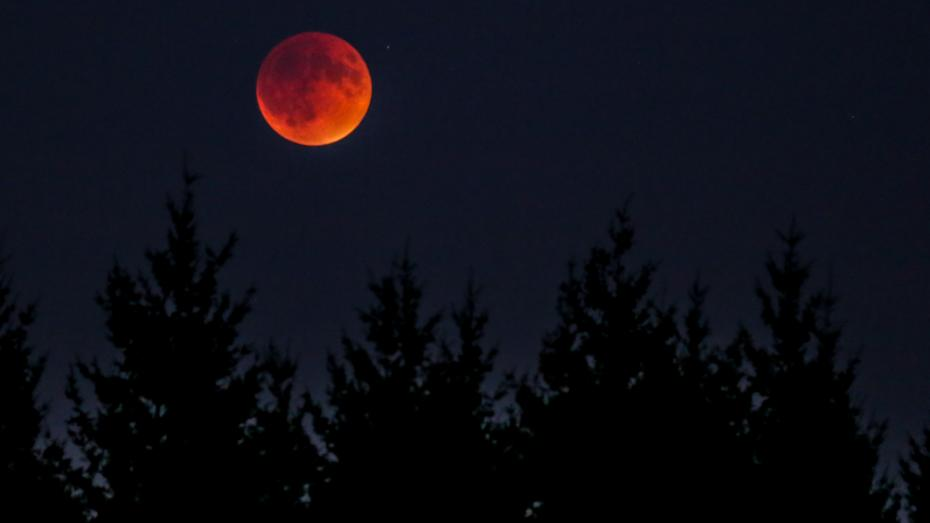 Pe 31 ianuarie va avea loc o eclipsă de super-lună. Fenomenul a avut loc ultima dată cu 150 de ani în urmă