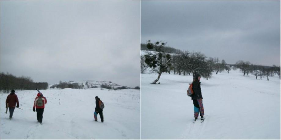 (foto, video) Un grup de tineri au improvizat o cursă de schi pe dealurile din raionul Călărași. Iată cum s-au distrat