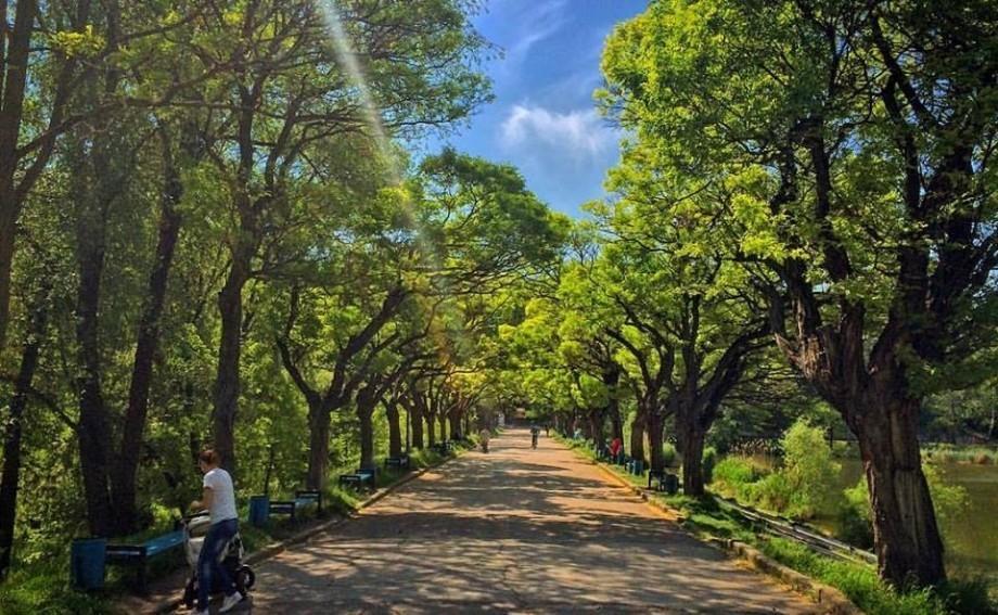 (foto) În parcul Valea Trandafirilor ar putea fi construit un Skatepark modern. Cum arată proiectul acestuia