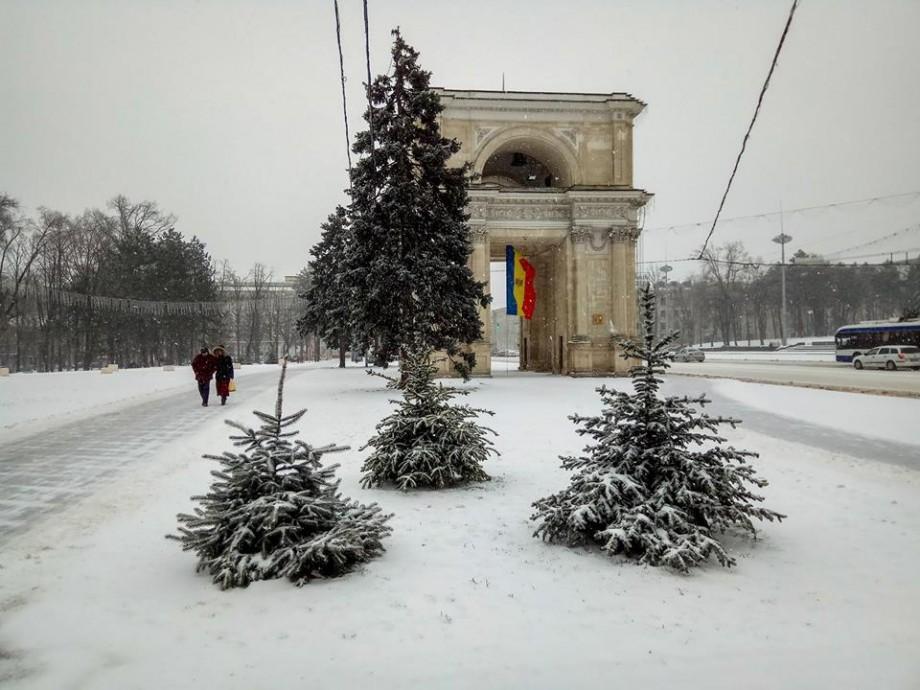 (foto) Iarnă rătăcită în luna martie. Cum se vede Chișinăul sub zăpadă prin obiectivul fotografului Sergiu Brînză