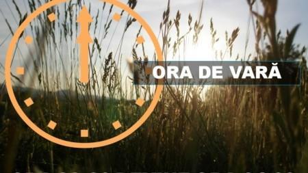"""Vara aceasta, fă """"Click pe TINEri"""". Participă la o tabăra de vară în România și află cum se administrează un ONG"""