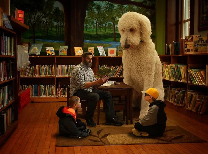 giant-dog-3
