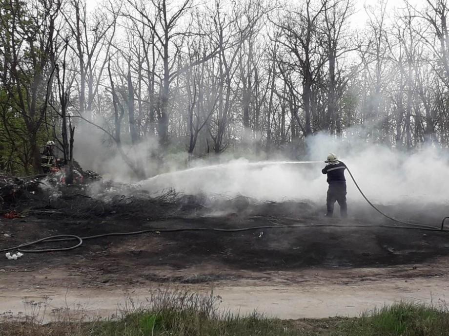 (galerie foto) Cum arată locul de unde a început incendiul din cimitirul Sfântul Lazăr din Chișinău