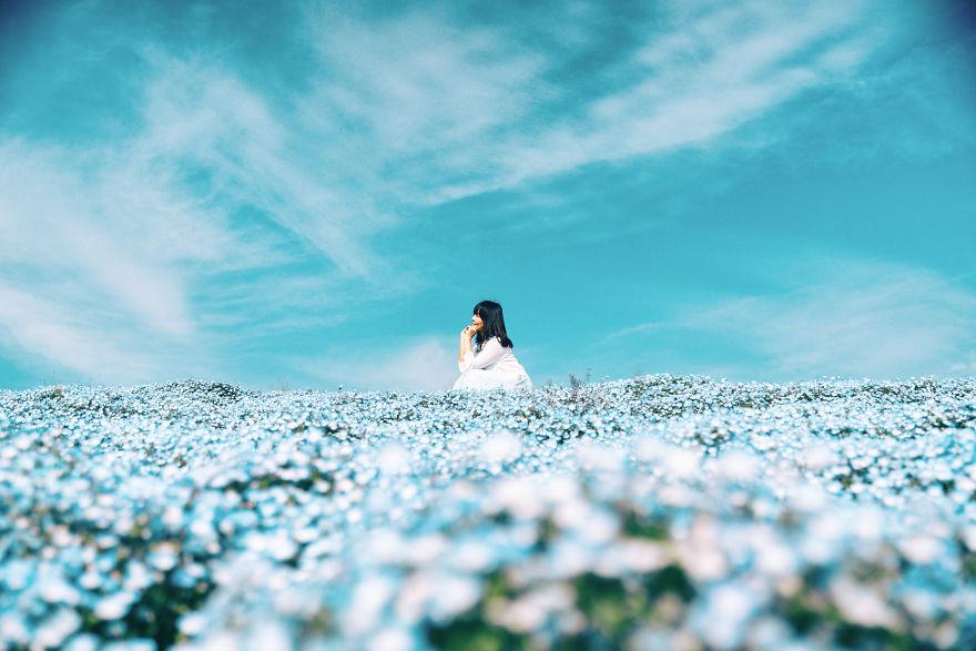 flori albastre1
