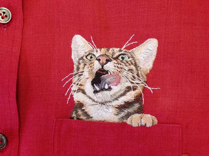 pocket-cat-02
