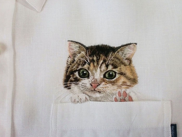 pocket-cat-10