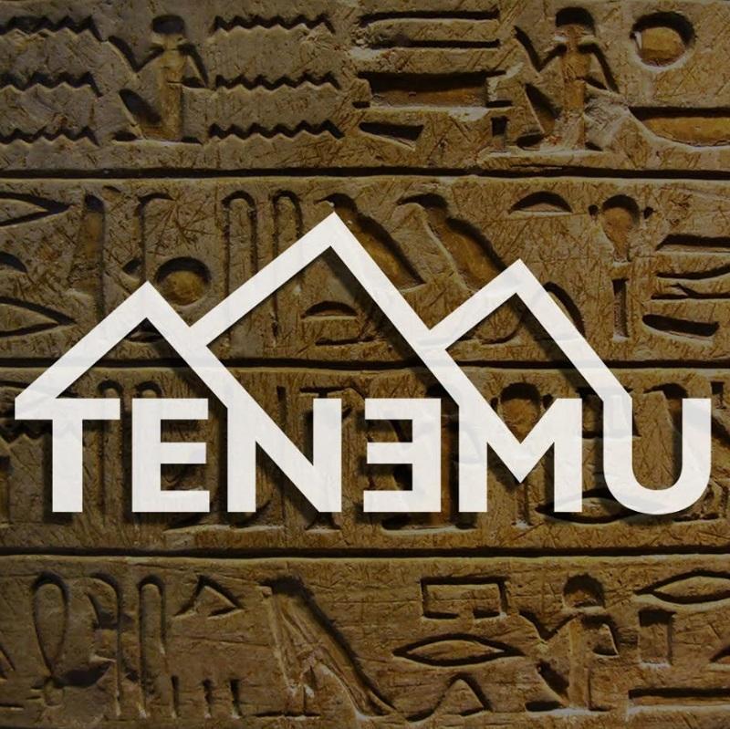 tenemu5