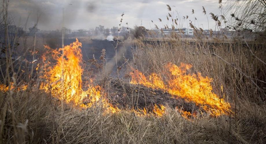 Pericol excepțional de incendiu. Serviciul Hidrometeorologic de Stat a prelungit codul galben emis anterior