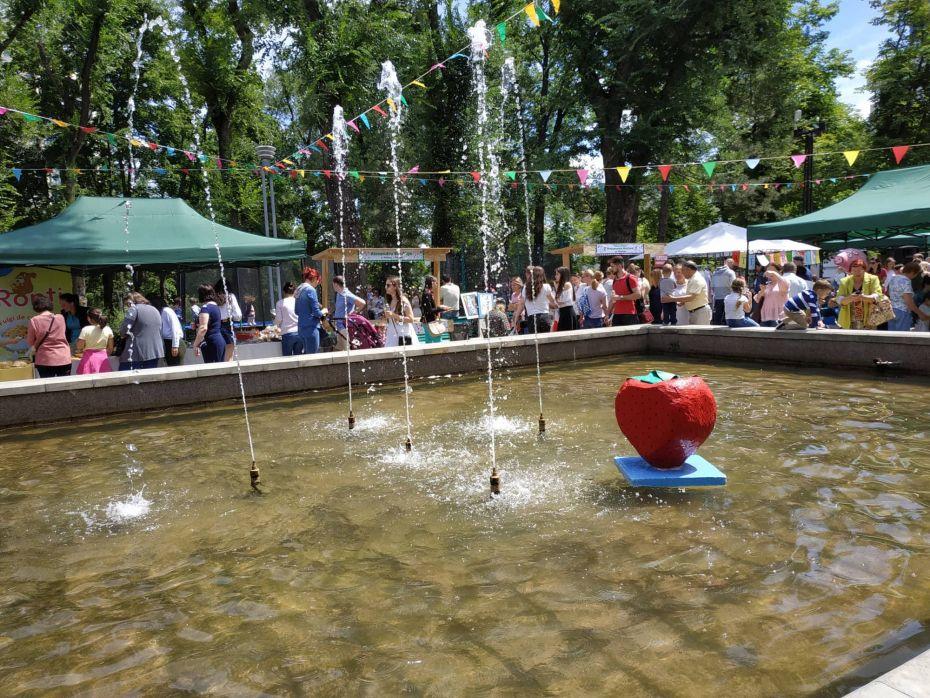 Summer Berry fair 16