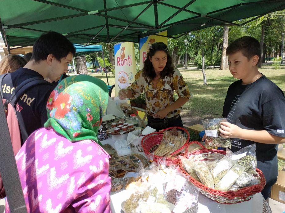 Summer Berry fair 5