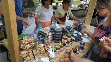 (foto) Descoperă istoria localității Solonceni, unicul sat în care a existat și funcționat o rută de troleibuz