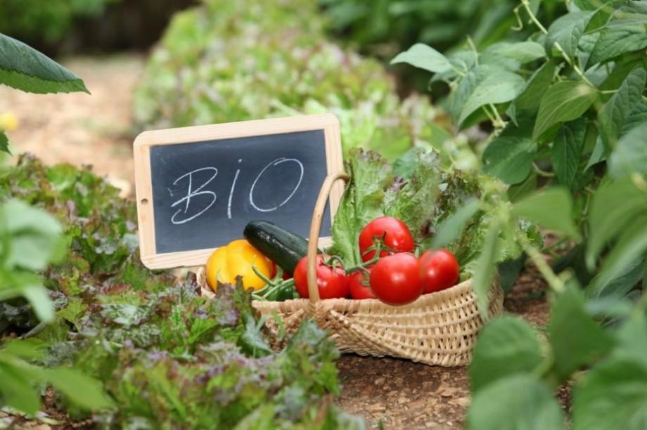 Susține producătorii ecologici și artizanali din Moldova. La Chișinău va fi lansată piața EcoLocal Farmers' Market