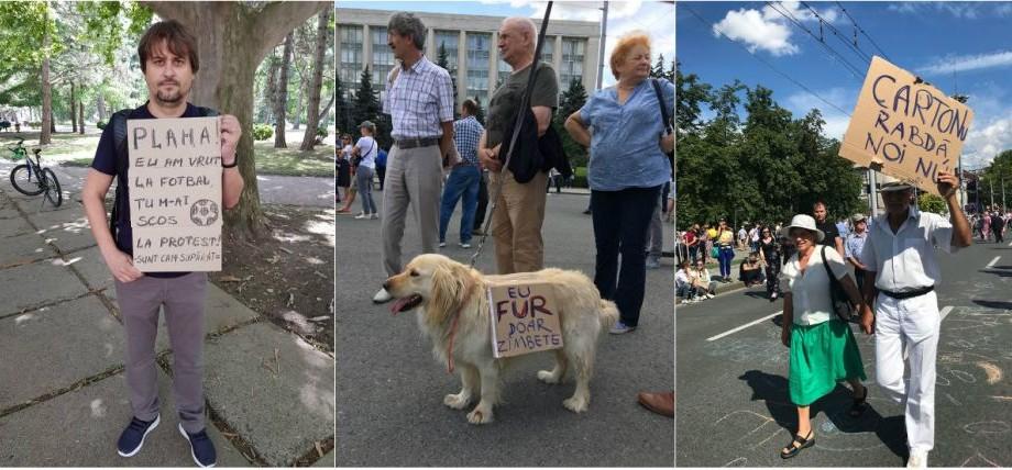 (foto) Protestul de astăzi, în 14 pancarte originale